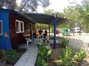 greece-turtle-conservation-volunteer